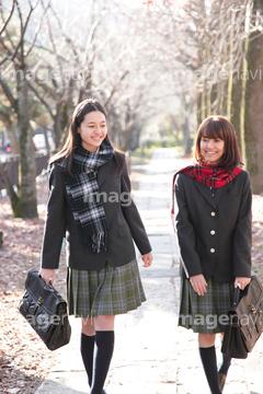 紅葉した並木道を歩く学生たち ...