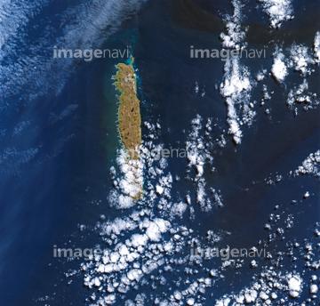 マッコーリー島の画像 p1_6