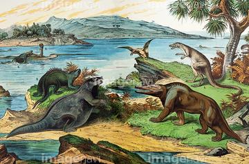 メガロサウルス】の画像素材   ...