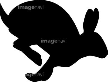 画像素材 生き物イラストcgの写真素材ならイメージナビ