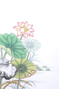 ハスの花の画像素材 花植物の写真素材ならイメージナビ