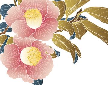 椿 イラスト 和風の画像素材 花植物イラストcgのイラスト素材