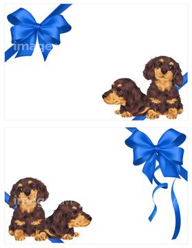 犬のイラスト特集 ミニチュアダックスフントイラストの画像素材