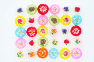 金太郎飴の画像素材 その他植物花植物の写真素材ならイメージナビ