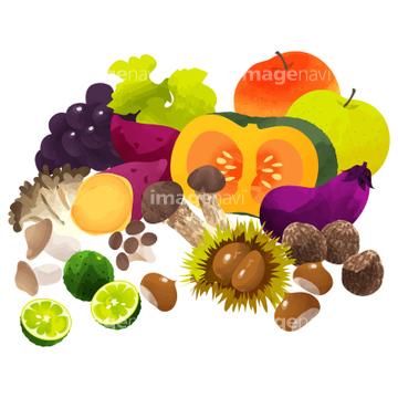 秋のイメージ総特集2011 秋のイラスト 秋の果物のイラスト 67471