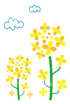 菜の花2 ガーリー素材 無料で使えるイラスト素材配布サイト