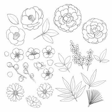 イラスト 手書き 花 ツバキ の画像素材 花 植物 イラスト Cgのイラスト素材ならイメージナビ