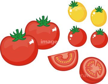 トマト 断面 フルーツトマト ロイヤリティフリー の画像素材 健康食品 美容 健康の写真素材ならイメージナビ