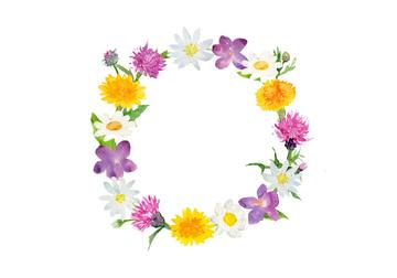 スミレの画像素材 花植物イラストcgの写真素材ならイメージナビ