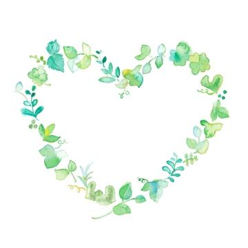 イラストcg 花植物 若葉クローバーシロツメクサの画像素材