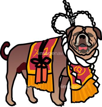 土佐犬の画像素材 年賀グリーティングの写真素材ならイメージナビ