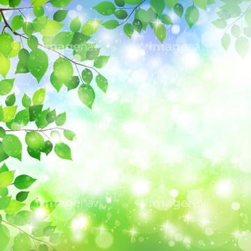 季節のイラスト 春の風景綺麗イラストの画像素材 自然
