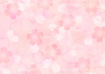 画像素材 花 植物 イラスト Cgの写真素材ならイメージナビ