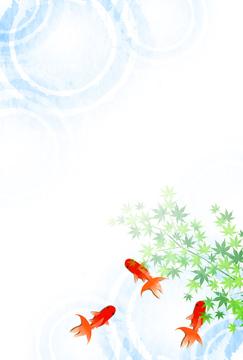 金魚の画像素材 生き物イラストcgの写真素材ならイメージナビ