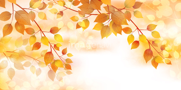 秋のイメージ総特集2011 秋のイラスト 紅葉のイラスト 67471