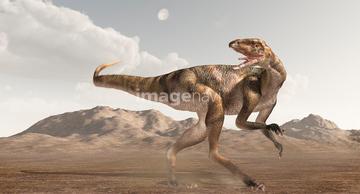 テコドントサウルス】の画像素材...