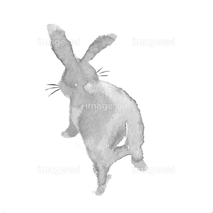 水彩画 うさぎ後ろ姿の画像素材12409594 イラスト素材ならイメージナビ