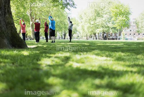 Active seniors exercising, practicing yoga in park