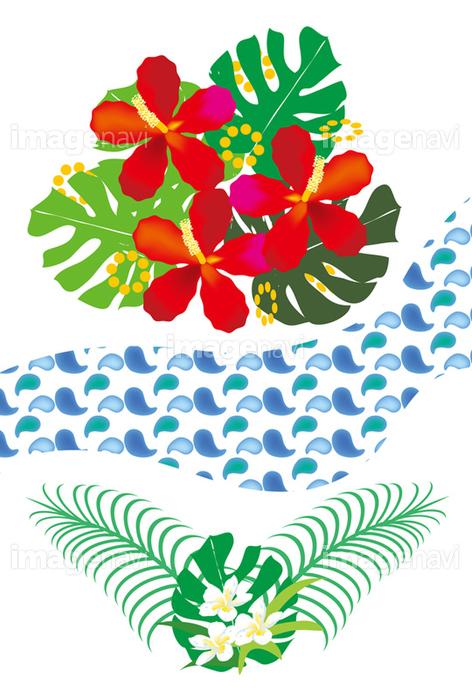 モンステラとハイビスカスとプルメリアの南国の花 の画像素材 イラスト素材ならイメージナビ