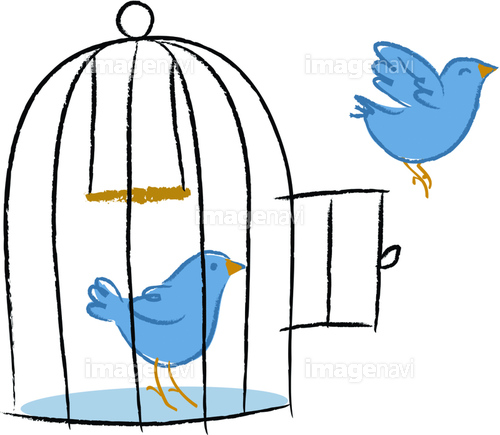 Two birds, one bird flying out of birdcage