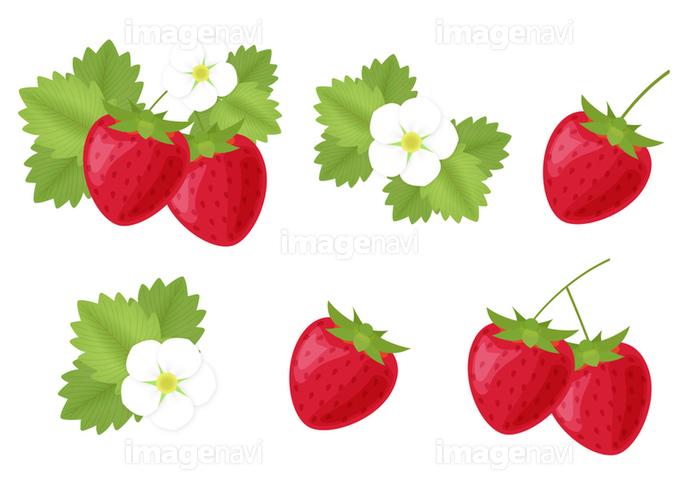 苺のクリップアートセットの画像素材31017782 イラスト素材なら