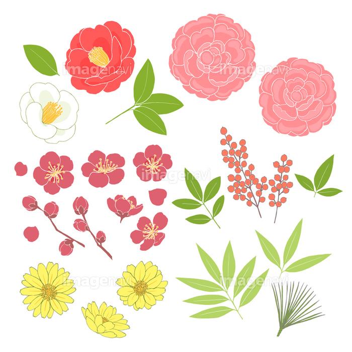 お正月の花素材の画像素材31252582 イラスト素材ならイメージナビ