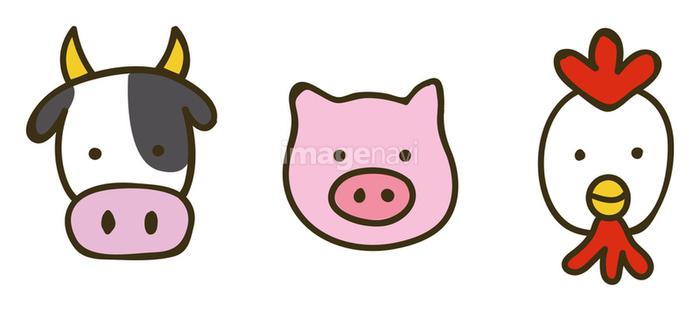 牛豚鶏のイラスト素材の画像素材31278386 イラスト素材なら