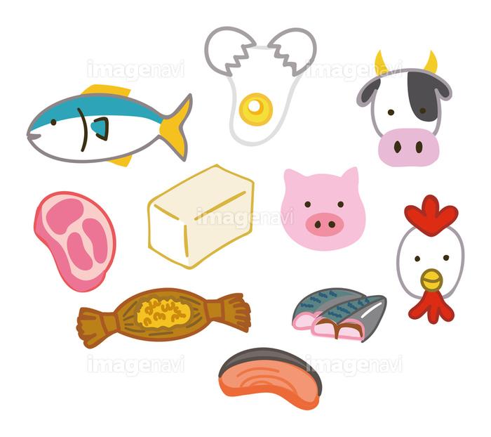 タンパク質 の 食材