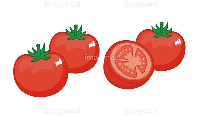 トマトのイラスト素材 の画像素材 イラスト素材ならイメージナビ