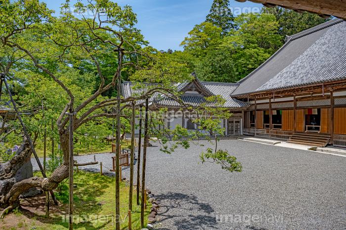 松島 瑞 巌 寺