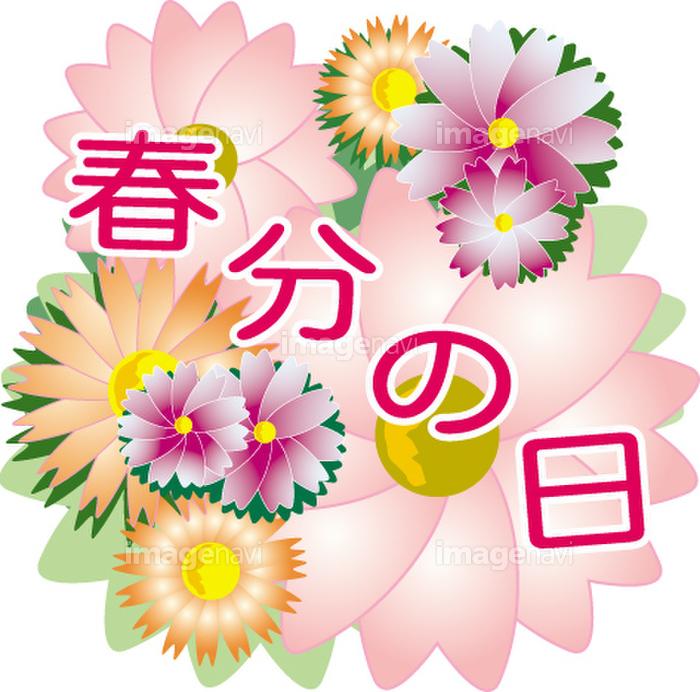 春分の日】の画像素材(40121328) | イラスト素材ならイメージナビ