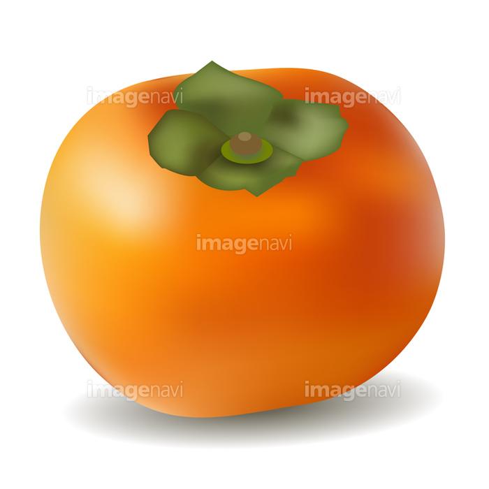 柿 果物 秋 アイコン の画像素材41026929 イラスト素材なら
