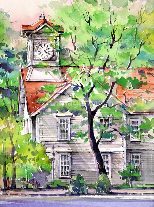 新緑の札幌時計台の画像素材50069382 イラスト素材ならイメージナビ