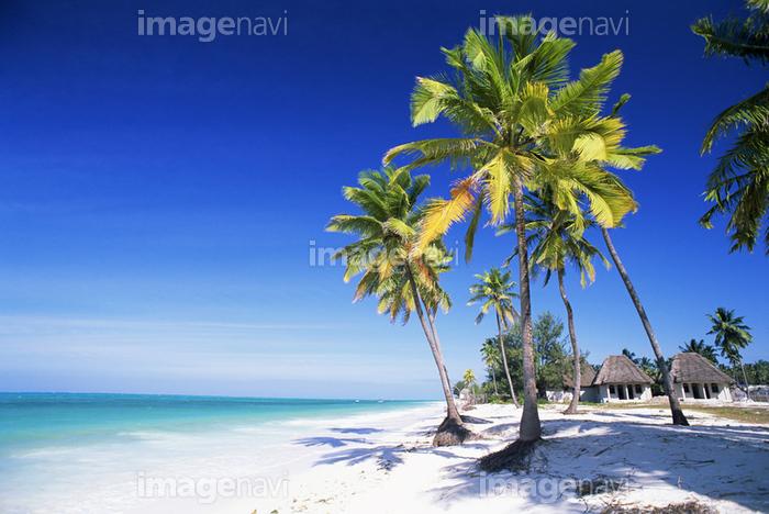 ウングジャ島 砂浜 インド洋 青空 リゾート 南国 夏 の画像素材