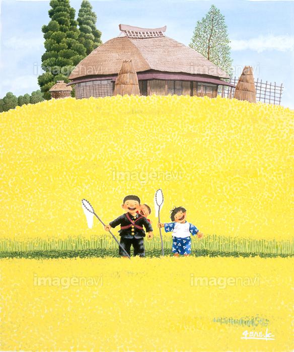 菜の花畑と子供の画像素材70134079 イラスト素材なら
